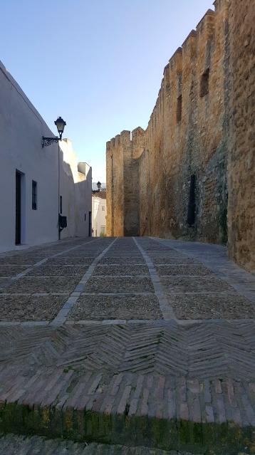 Vejer street