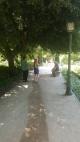 Botanic 2
